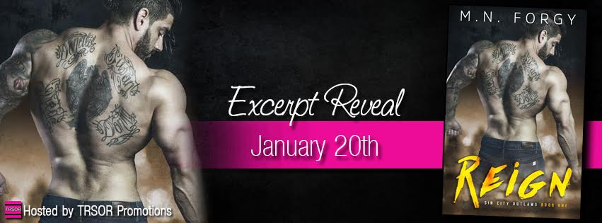 Reign Excerpt Reeal Banner