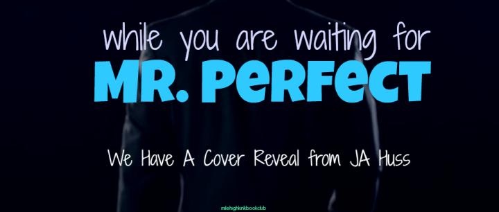 Mr. Perfect by JA Huss