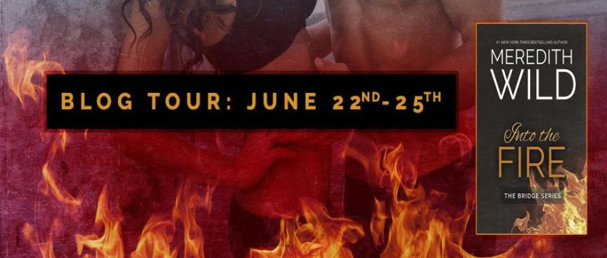 Blog Tour: INTO THE FIRE by Meredith Wild#Giveaway