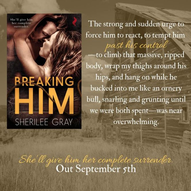 Mile High KINK Book Club presents: Breaking Him by Sherilee Gray Blog Tour