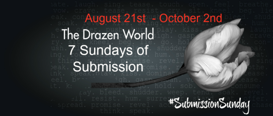 Today's Author Spotlight: CD Reiss Songs of Submission Series