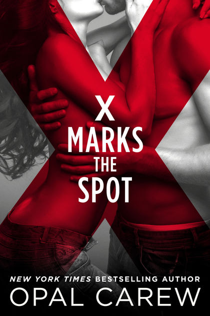 X MARKS THE SPOT by Opal Carew   Book Review